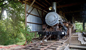 Train & Tours at Southern Forest Heritage Museum, Longleaf LA