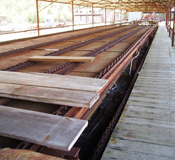 Southern Forest Heritage Museum Green Chain Lumber