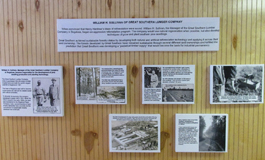 Sustainable Forestry Exhibit - Southern Forest Heritage Museum