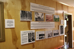 Sustainable Forestry - Southern Forest Heritage Museum