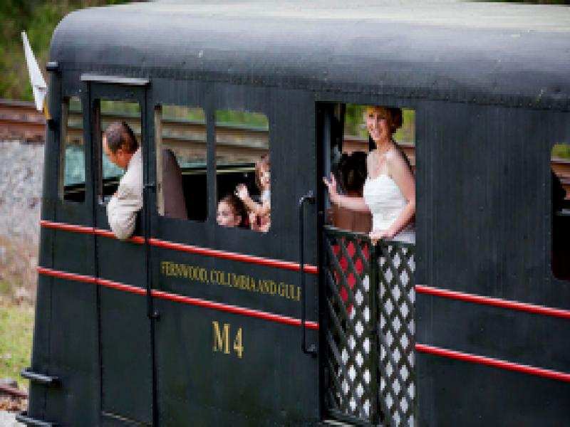 Wedding at the Southern Forest Heritage Museum